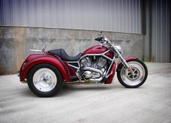 V-Rod Coupe